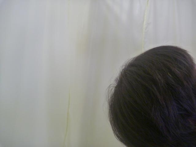 P1090130.jpg