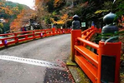 京都 高雄山 神護寺の紅葉1