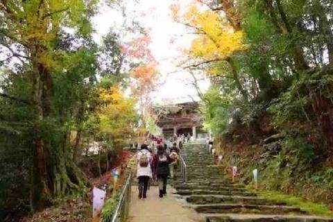 京都 高雄山 神護寺の紅葉9