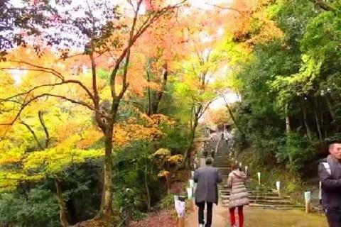 京都 高雄山 神護寺の紅葉7