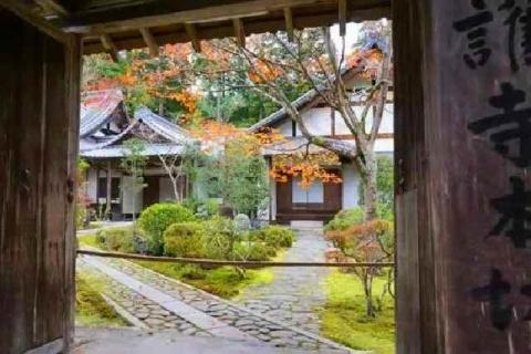 京都 高雄山 神護寺の紅葉11