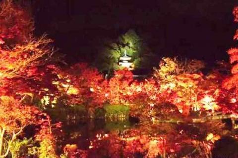 京都永観堂18