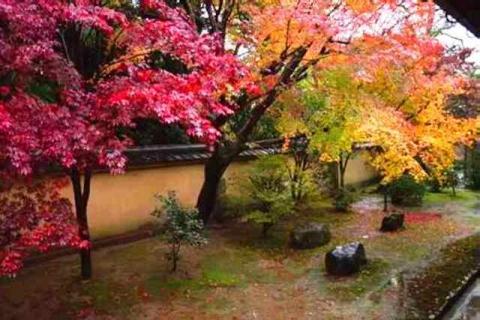 京都大徳寺興臨院9