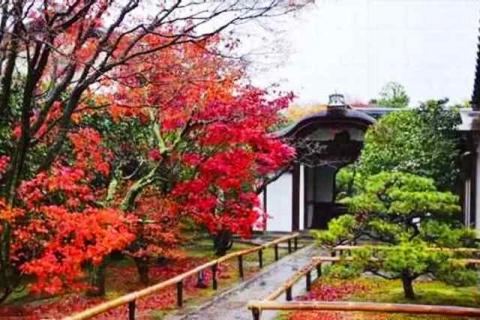 京都大徳寺興臨院14