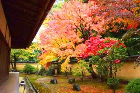 京都大徳寺興臨院12