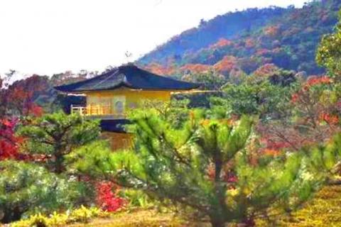 京都金閣寺3