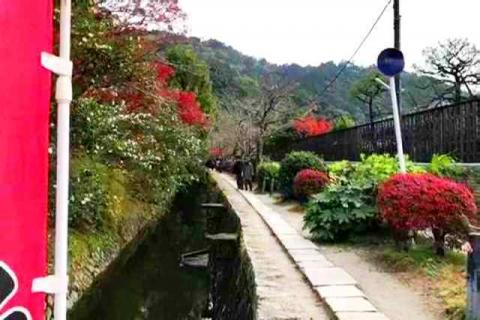 京都の紅葉 哲学の道13
