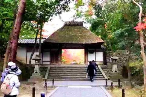 京都の紅葉 哲学の道 法然院
