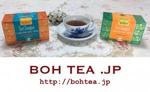 BOH Tea .jp