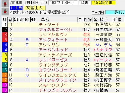 19初富士S