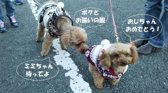 新春の散歩挨拶1