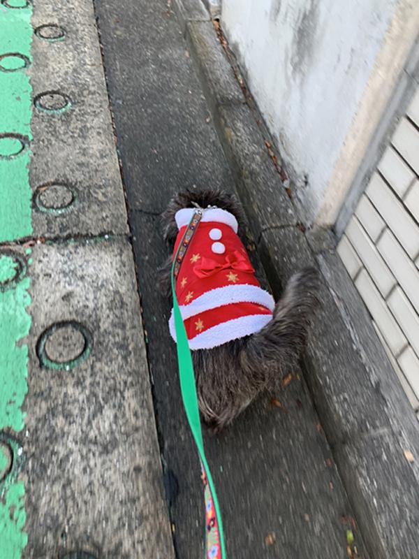 01 クリスマス