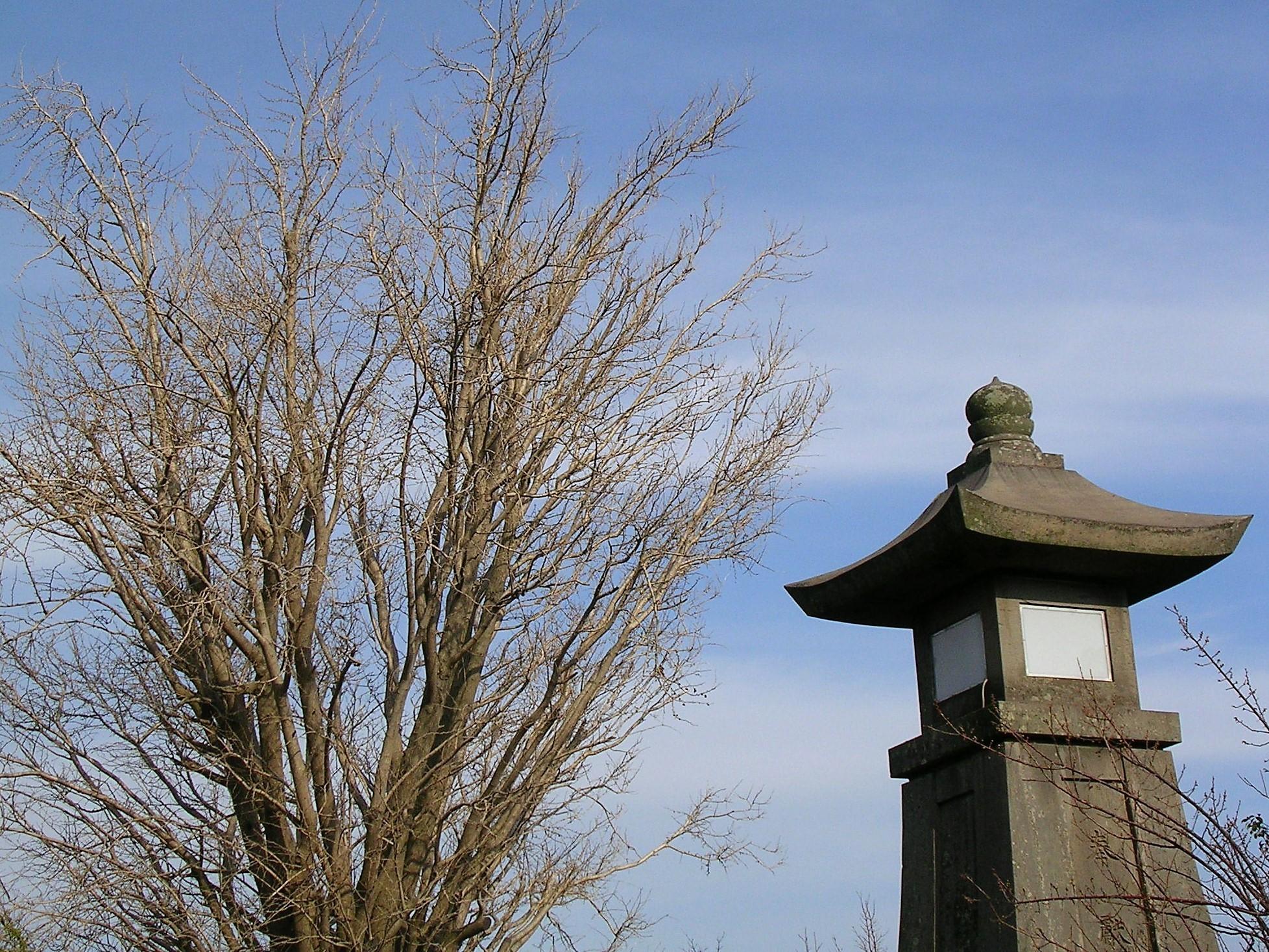石灯籠と裸木
