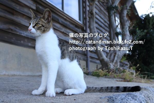 IMG_0562s.jpg