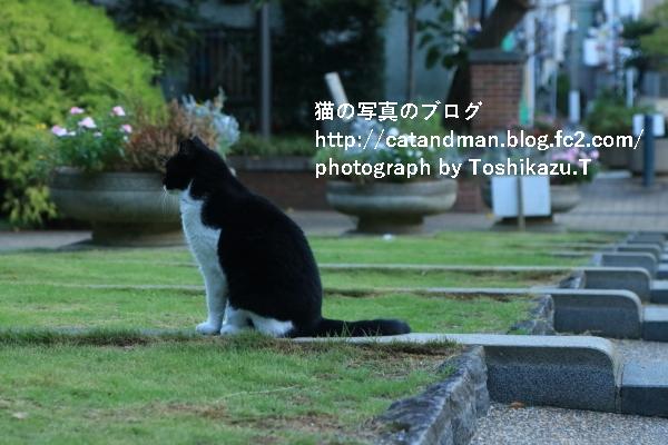 IMG_4572s.jpg
