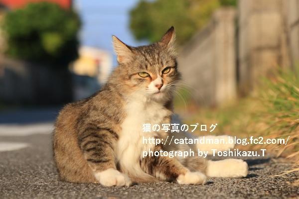 IMG_5326s.jpg