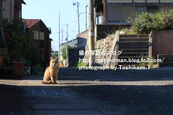 IMG_7063s.jpg
