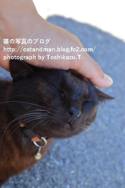 IMG_7082s.jpg