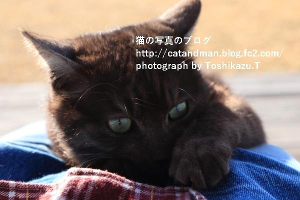 IMG_7580s.jpg
