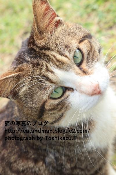 IMG_8546s.jpg