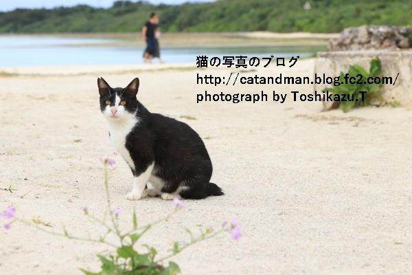 IMG_8965s.jpg
