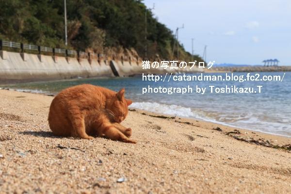 IMG_94500s.jpg