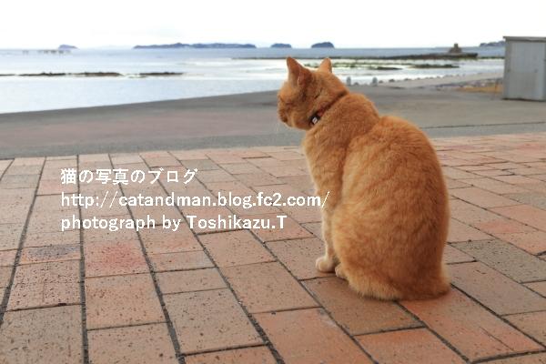 IMG_9472s.jpg
