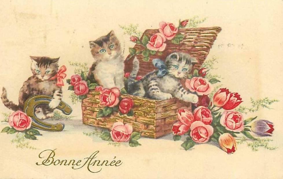 C-CAT-BA-CAT-3-ROSES-TULIPS-BASKET.jpg