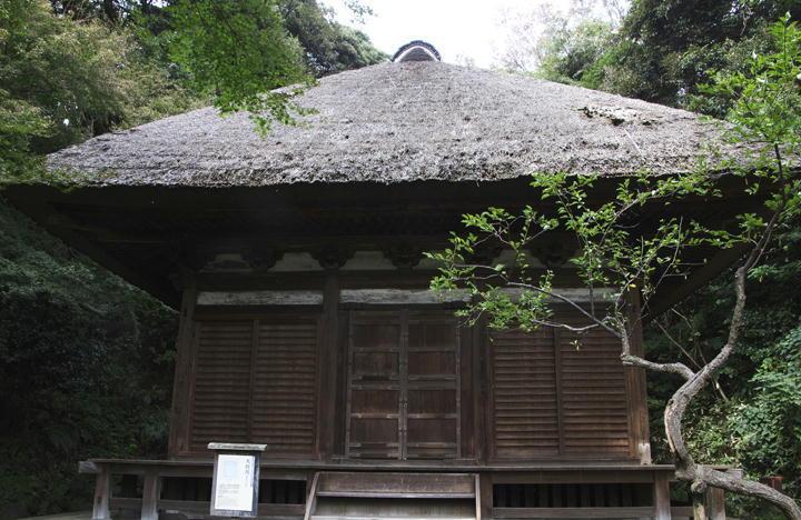 天寿院-606