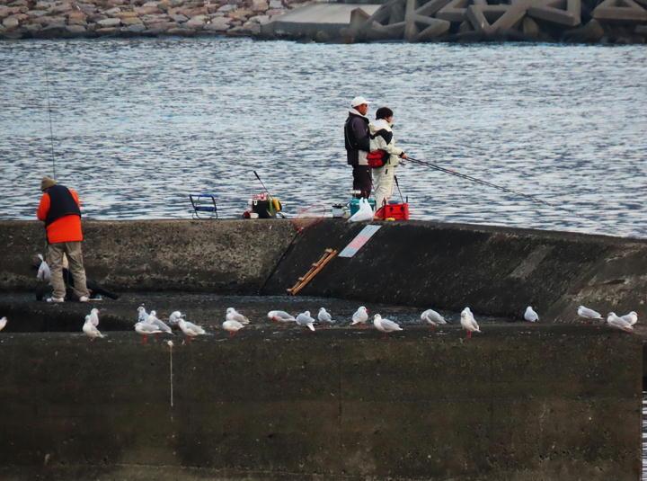 釣り人-043