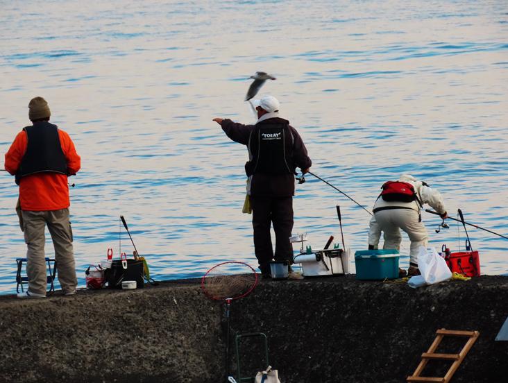 カモメと釣り人-050