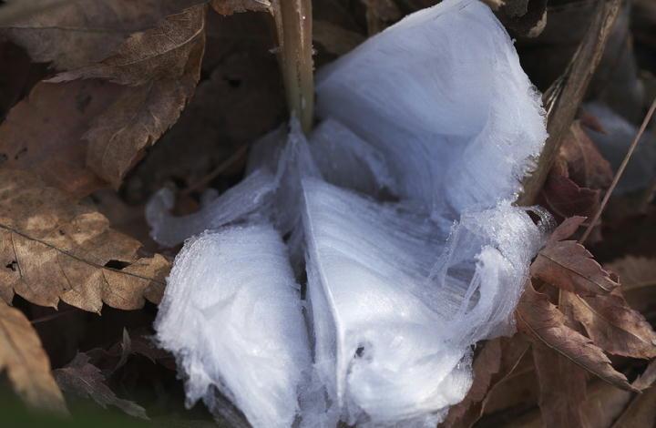 氷の華-113