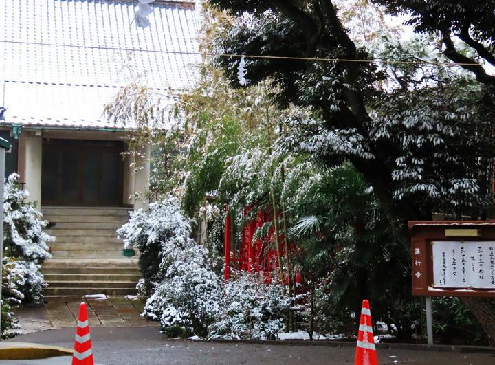 笹に雪-829