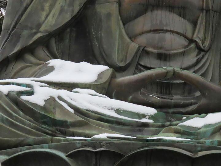 大仏様の手-889