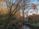 椿山荘 庭