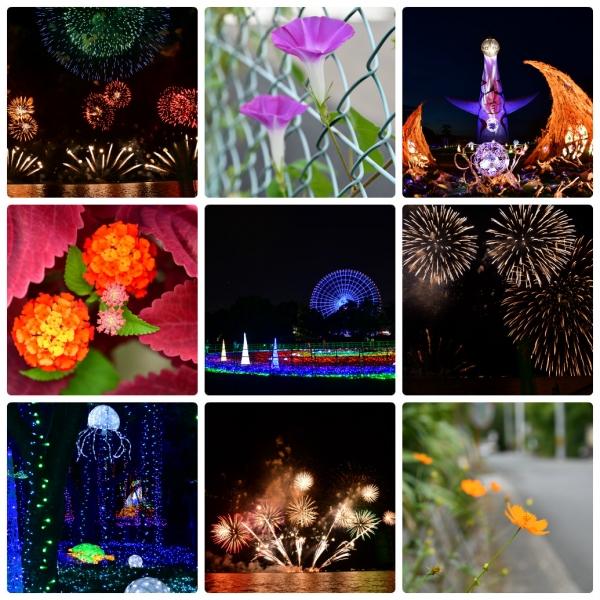 collage_201808.jpg