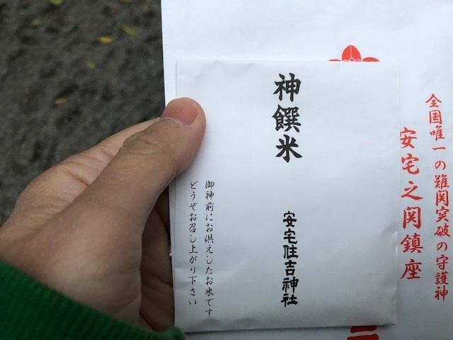 ichinichiii.jpg