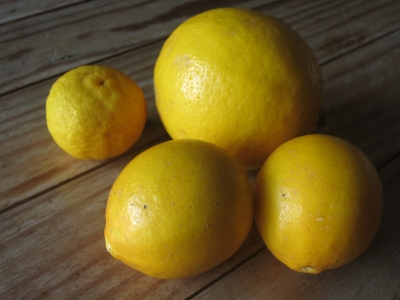 190106-106=SUZ産無農薬レモンユズ aPBR