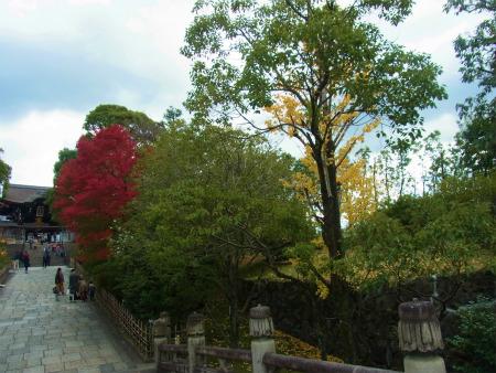 syukusyo-RIMG1832.jpg