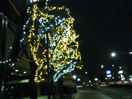 syukusyo-RIMG1856.jpg