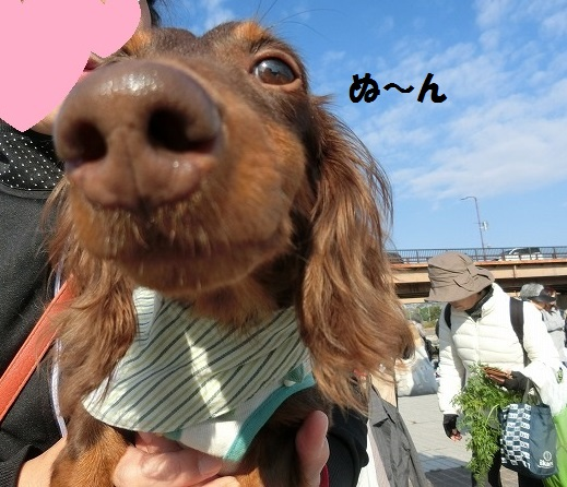 2018年11月宝塚朝一バザー 005