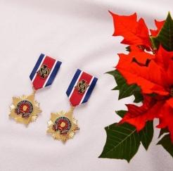 18122615周年記念グッズ勲章