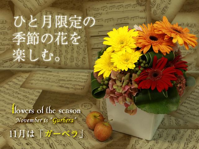 ガーベラ 季節 秋 おすすめ アレンジ 花束 プレゼント 誕生日 サプライズ