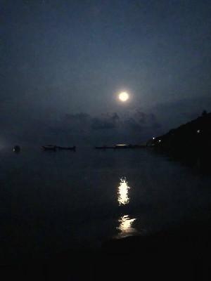 1年で最も高く昇る満月