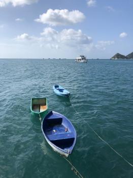 レスキューコース、rescue、タオ島
