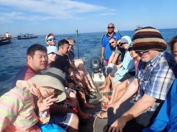 タオ島、海ブログ