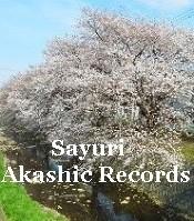 桜咲く開花予報予想 アカシックレコードリーダーさゆり