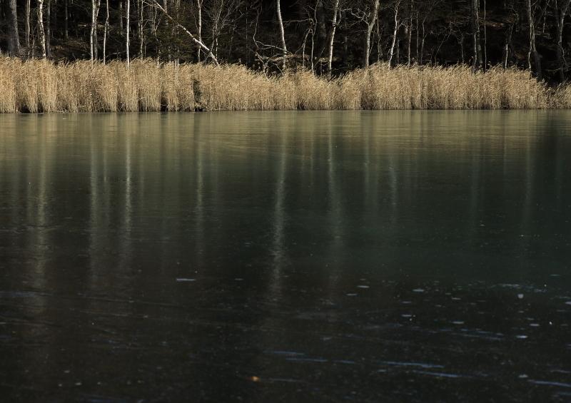018A9651 オンネトー湖畔