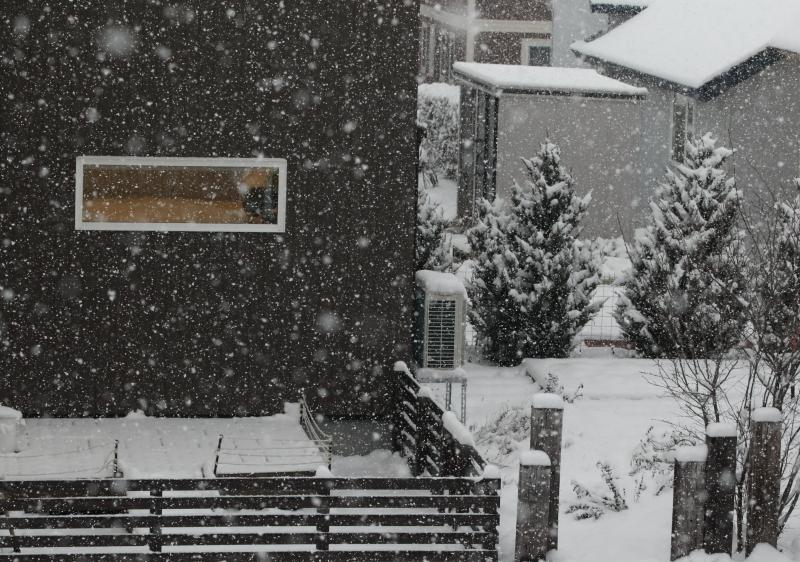 4D9A9991 雪が降る