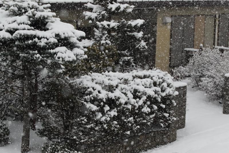 4D9A9992 雪が降る